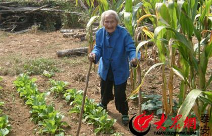 重阳节特稿:泰安三位百岁老人的长寿秘诀