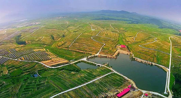 新泰良心谷:悠悠绿色生态园 乡村旅游好休闲