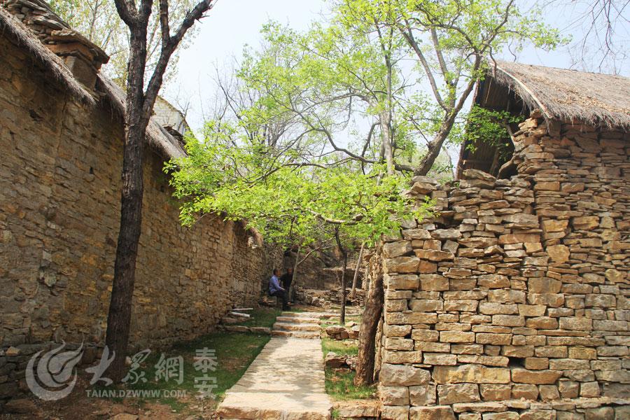 木与石交缠、相依相生,如同远处生活在这里的村民,牢固地扎根在这里。