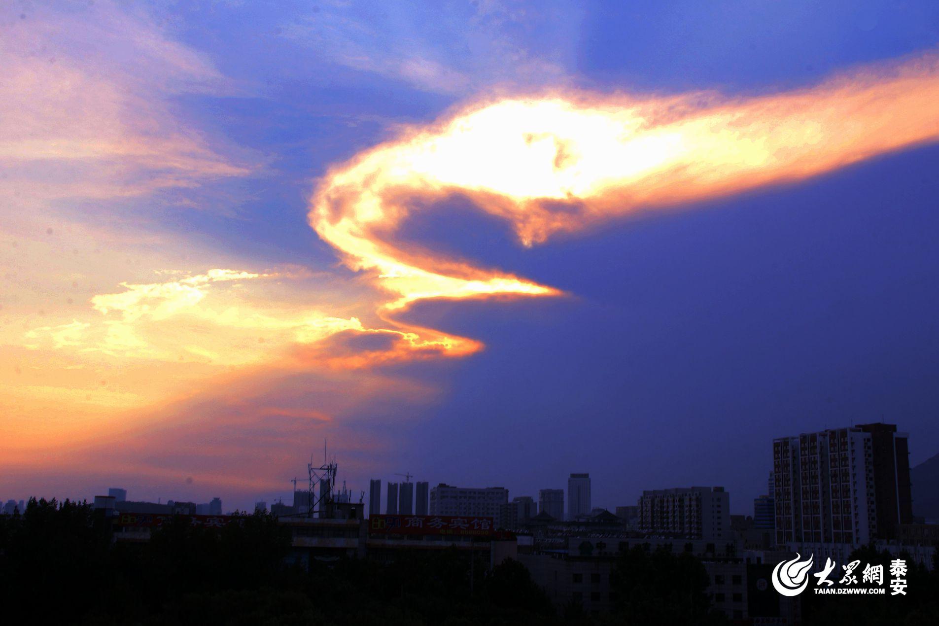 """泰安上空惊现""""火凤凰""""(图片来源:大众网拍客""""四方通行"""")"""