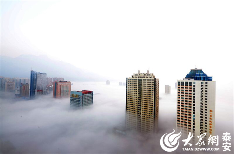 大众网泰安1月3日讯 1月3日7时30分,泰安气象台发布大雾红色预警信号:目前泰安大部地区已经出现能见度小于50米的浓雾,预计今天白天将持续影响我市。(陈光辉 摄)