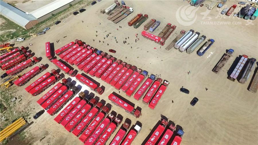 近日,近百辆大货车组成车队,在内蒙古锡林郭勒盟草原整齐排开,排队抢运羊粪,场面十分壮观。这些羊粪将将作为有机肥从内蒙古运往山东泰安。