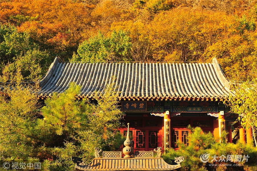 10月30日,实拍山东泰安桃花峪彩石溪,金秋如画,如梦如幻。