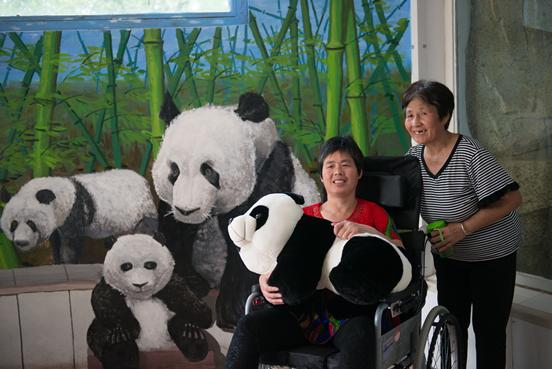 大熊猫,老虎,斑马,火鸟等稀有动物,能一次见到这些分布于世界各个大洲